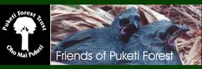 The Puketi Forest Trust